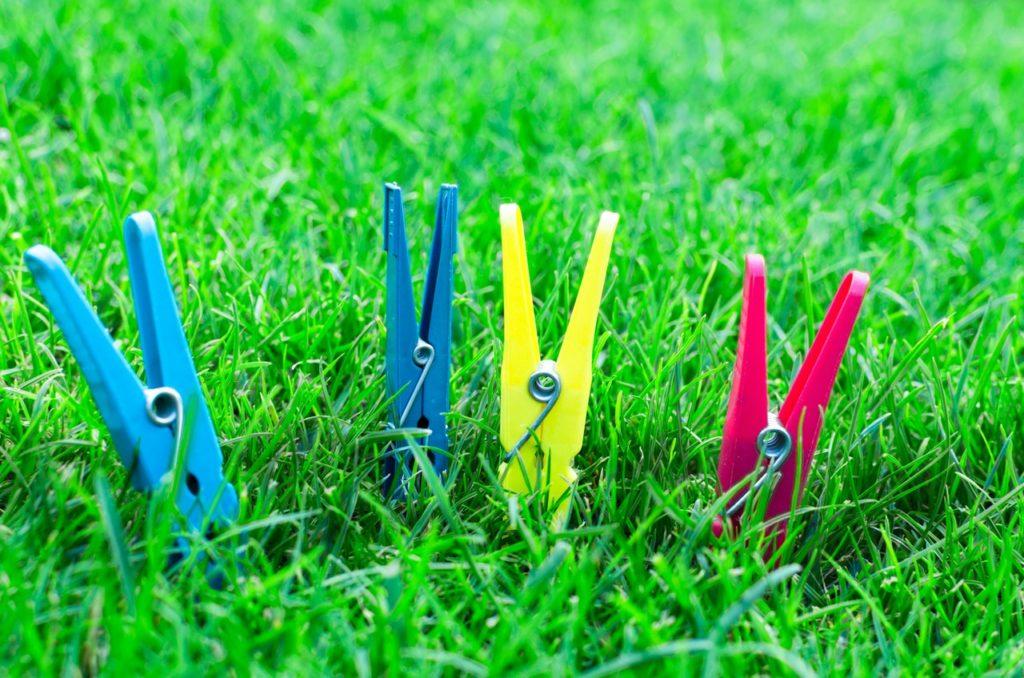 Rasen im Sommer - Hausundgarten-muenchen.de