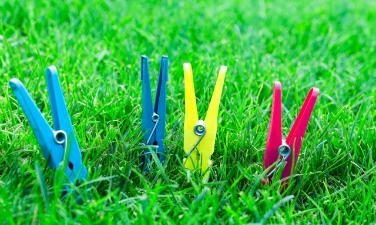 Rasen im Sommer Tipps - Hausundgarten-muenchen.de