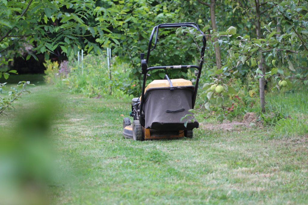 Rasenpflege im Frühjahr - Hausundgarten-muenchen.de